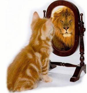 Il finto perbenismo del narcisista.